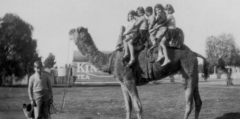 Melkie Kids on Camel - Temora 1930s